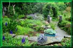 Pinsia Garden                 & Nursey
