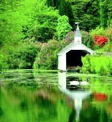 Trevarno                 Gardens