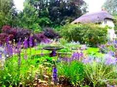 Gardens Amp Flower Shows