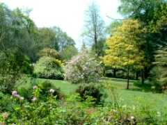 Spinners Garden, Boldre, Hampshire -
