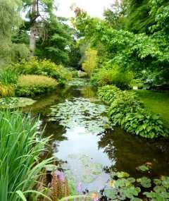 Longstock Park,