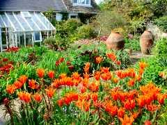 Monk's House Garden, East Sussex