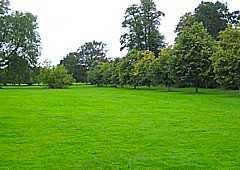 Camer Park