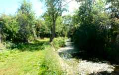 Wilts & Berks Canal