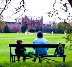 Cricket in the Parks