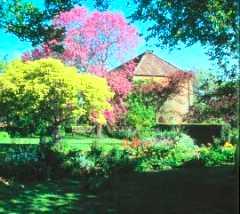 East Lambrook Gardens