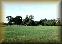 Byfleet                     Park