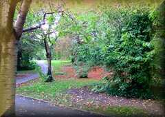 Mounthill                 Gardens