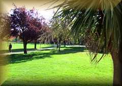 Churchfields Park